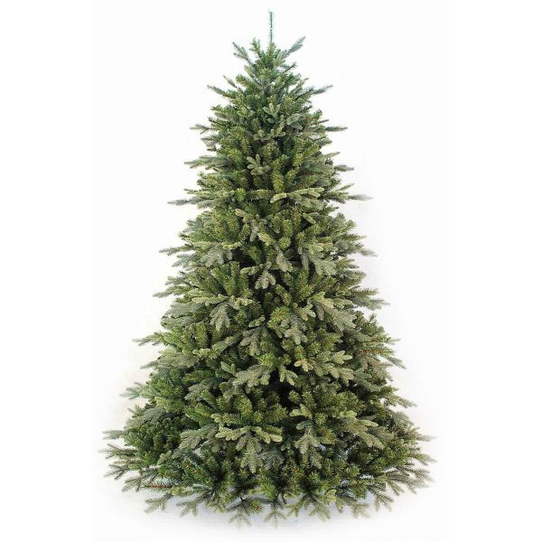 Χριστουγεννιάτικο Δέντρο Deaware Silver Fir (2,10m)