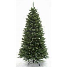 Χριστουγεννιάτικο Δέντρο Exeter Fir (2,40m)