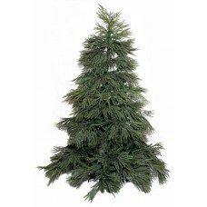 Χριστουγεννιάτικο Δέντρο LS Pine (2m)