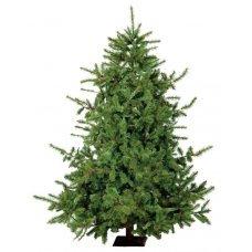 Χριστουγεννιάτικο Δέντρο LN (2,10m)