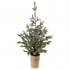 Χριστουγεννιάτικο Επιτραπέζιο Δέντρο Χιονισμένο σε Γλαστράκι (1m)